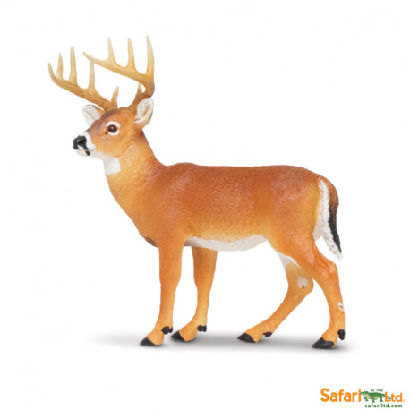 Ciervo de Virginia