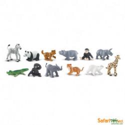 Bebés del Zoológico