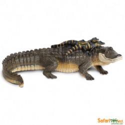 Aligator + bebé