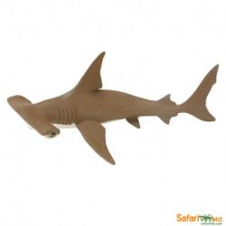 Tiburón martillo bebé