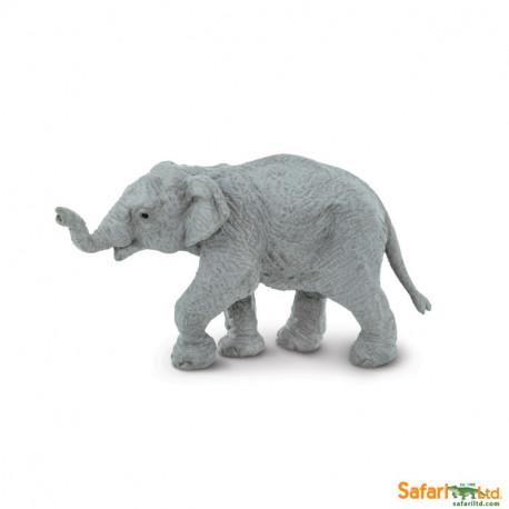 Elefante asiático bebé