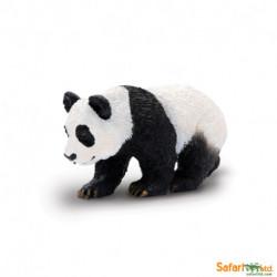 Oso panda bebé