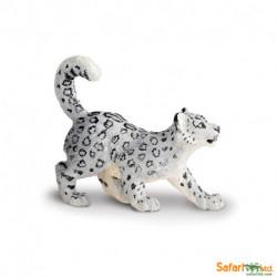 Leopardo de las nieves bebé