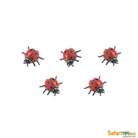 S340122 - Mariquitas