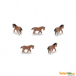 S340922 - Clydesdales
