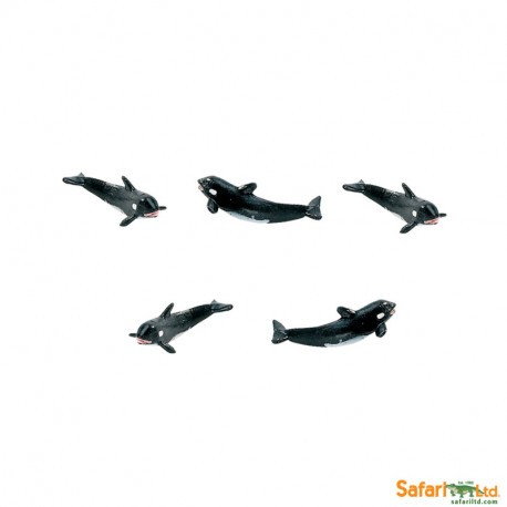 S341022 - Orcas