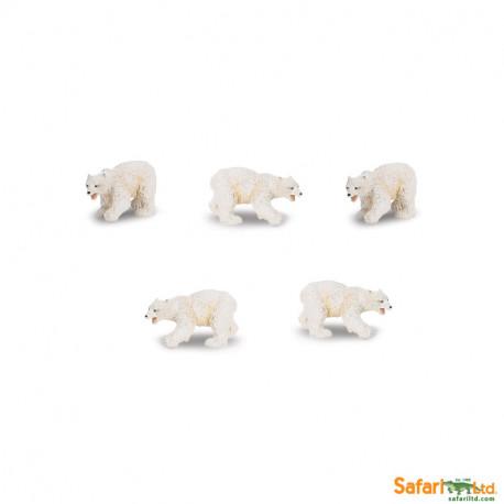 S341722 - Osos polares