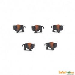 S341822 - Bisontes