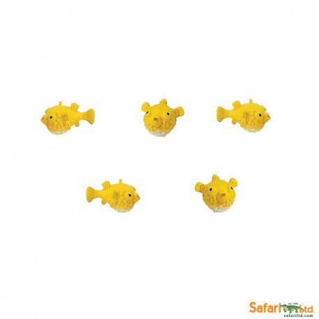 S342522 - Peces Globos