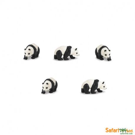 S342722 - Osos panda