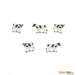 S343622 - Vacas Holstein