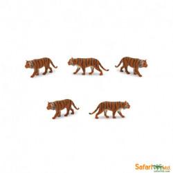 S343922 - Tigres siberianos