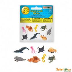 S352122 - Animales marinos