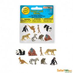 s352222 - Animales exóticos