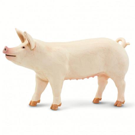 Cerdo Blanco Grande
