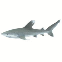 Tiburón Punta Blanca Oceánico