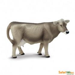Vaca Brown Swiss
