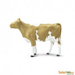 Vaca Guernsey